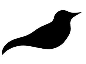 Silhouette eines Albatros.