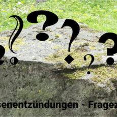 Blasenentzündung durch Unterkühlung? Im Bild ein großer, kalt anmutender Steinbrocken im Grünen. Davor viele Fragezeichen und der Text: Berichte über Blasenentzündungen - viele Fragen bleiben ...