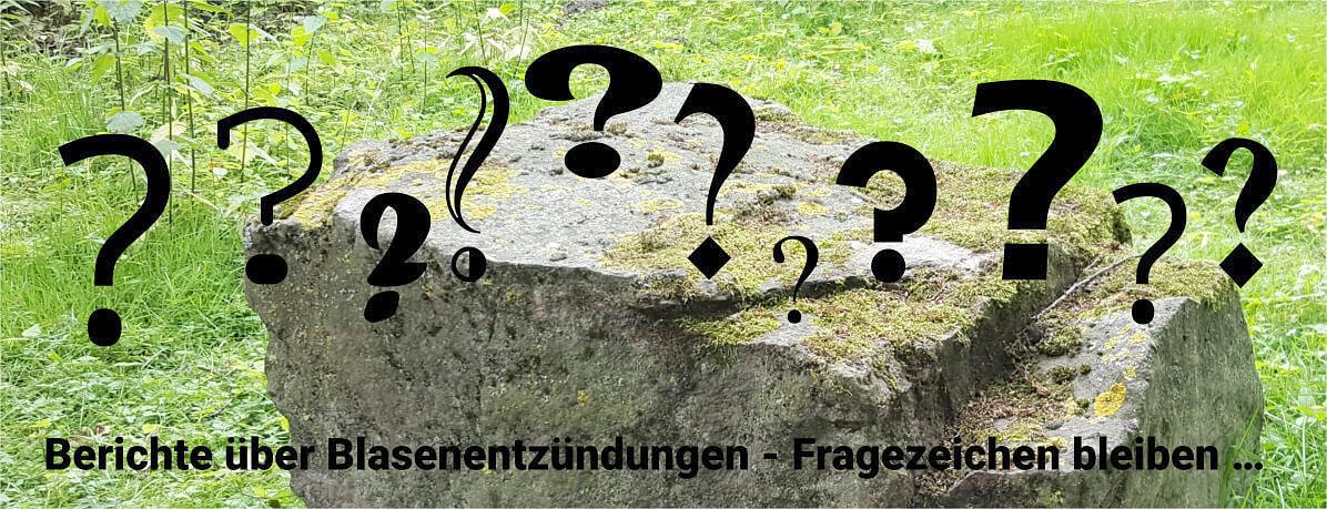 Zum Sitzen geeigneter, großer Steinbrocken im Grünen. Davor viele Fragezeichen. Darunter, noch im Bild, folgender Text: Berichte über Blasenentzündungen - viele Fragen bleiben ...