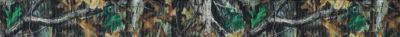 Waldmotiv: urwüchsiger Wald mit grünem und braunem Blattwerk.