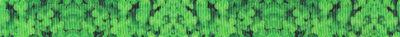Viele kleine, 3-blättrige Kleeblätter, dicht aneinander gedrängt.