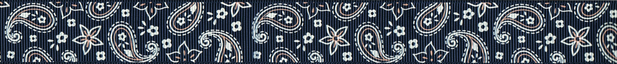 Paisleymuster auf blauem Ripsband.