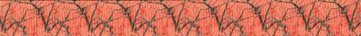 Zu sehen ist eine an Äste verschiedener Dicke erinnernde Struktur auf lachsfarbenem Hintergrund.