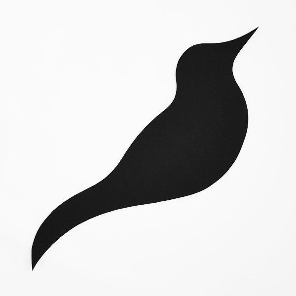 Silhouette schwarzer Vogel