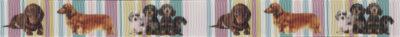 Ripsbandmotiv: Verschiedene Hunde, 2 Einzelne, 1 Hundegruppe, vor in hellen Pastelltönen gestreiftem Hintergrund
