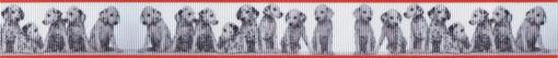 Ripsbandmotiv: Viele Dalmatiner dicht nebeneinander, vor weißem Hintergrund. Ripsbandrand oben und unten orangerot.
