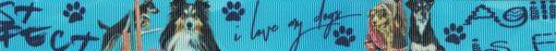 je 2 Hunde in der verschiedenen Posen nebeneinander, dazischen mittig die Aufschrift: I love my dogs. Hellblauer Hintergrund.